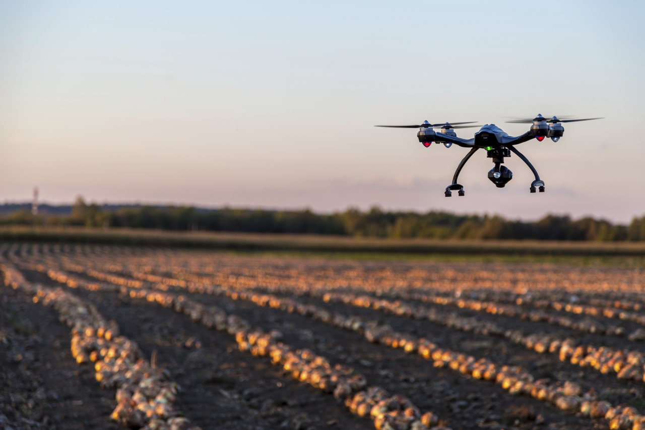 Laval, ?anada - September 23, 2015: Drone Flying At Sunset over an onions field. The drone is a Yuneec Typhoon Q500+ equipped with a 4k camera.