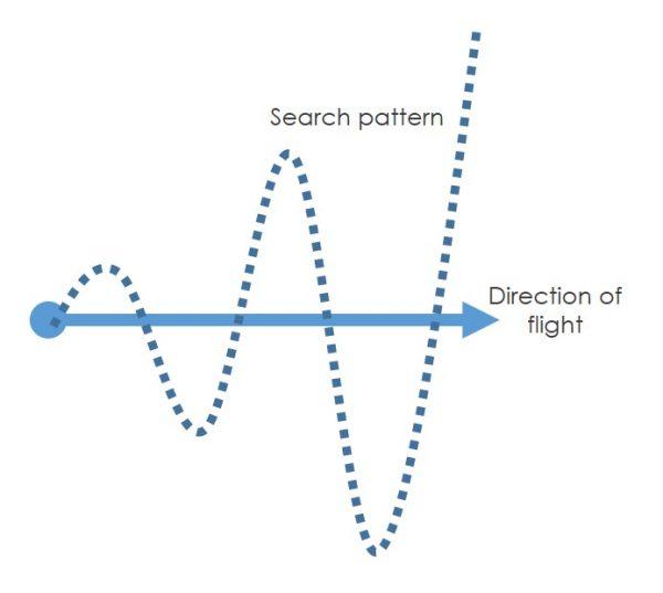 Loc8tor Lite search pattern